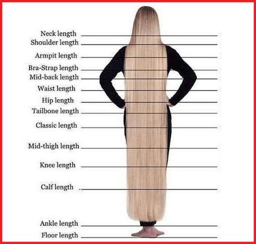 full hair length chart