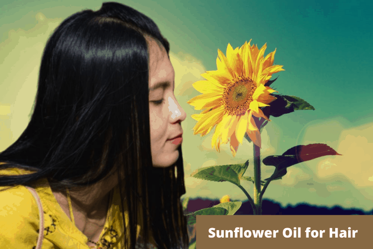 sunflower oil for hair